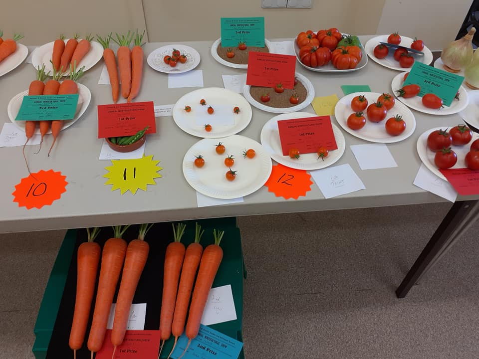 carrots and tomatoes