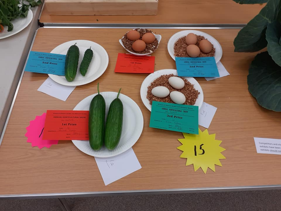 eggs and courgettes